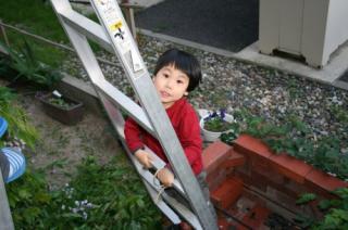 20080506_0306.jpg