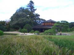 岡山後楽園 20081110