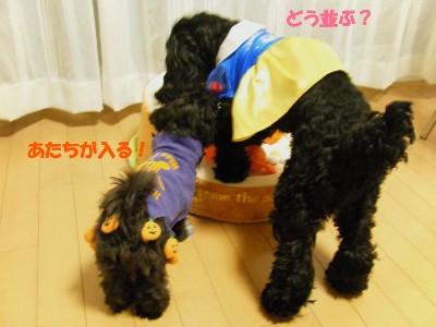 saku&tema 1830261734