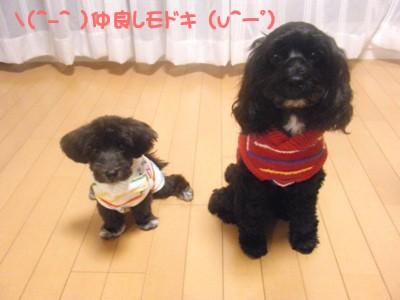 saku&tema 1830261794