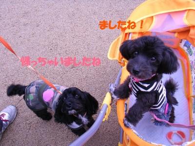 saku&tema 1830261809