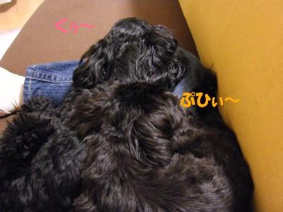 saku&tema 1830261819
