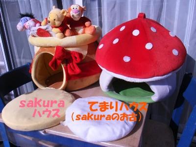 saku&tema 1830261883