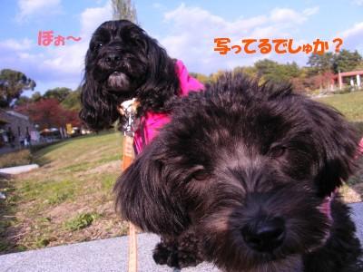 saku&tema 18302619081