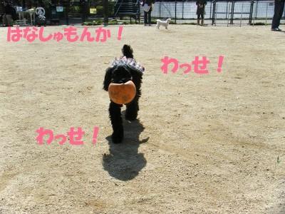 かふぇとらん 041
