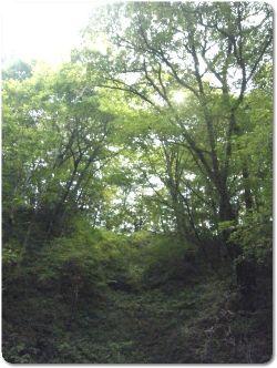 軽井沢 334