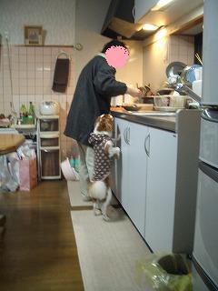 036_20090111000007.jpg