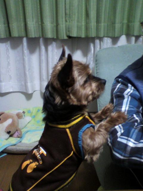 プータン2012お父さんと