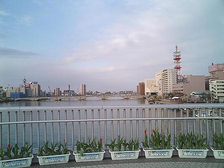 20070419_0280.jpg