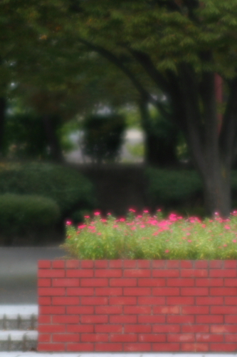 20071011_4983.jpg