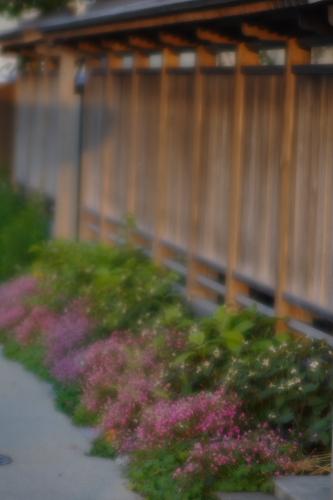 近所にいい感じの塀がある