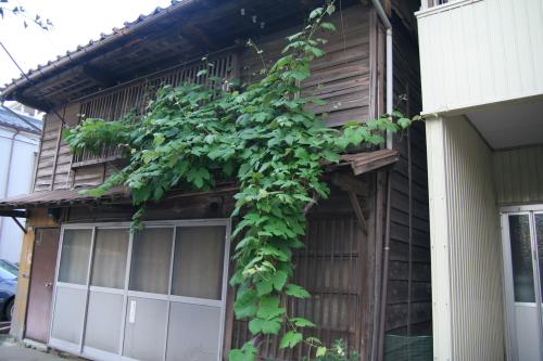 2階の格子と植物がステキな雰囲気