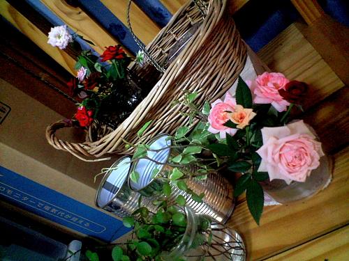 バラが次々咲くけど、すぐにダメになっちゃう。。。