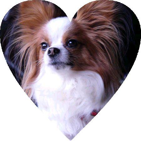 heartS37.jpg
