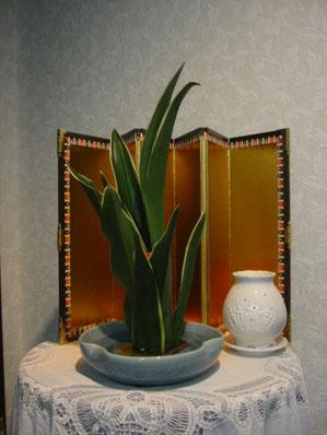 2008-01-01 002