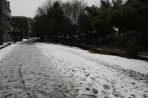 080205-snow1.jpg