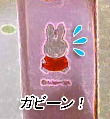 2008-MAR1-はぶらし3