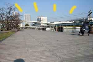 2008-03-01-portside公園とは