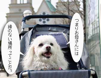 2008-04-02nd-縁のないおとぎの国