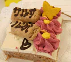 20080419-スリードッグお誕生会ケーキカット