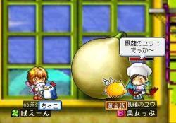 7・8日ーM果実の種
