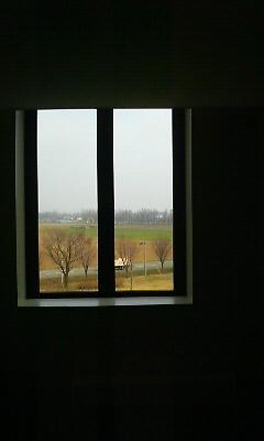 窓からの春