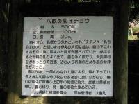 1IMG_6806.jpg