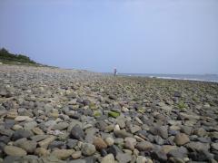 釈迦ケ浜の石