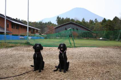 富士山をバックに・・・