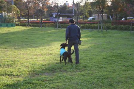 舎人公園でトレーニング①