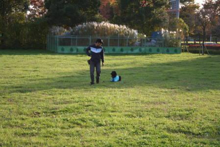 舎人公園でトレーニング②