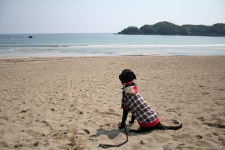 海を見つめる紗羅