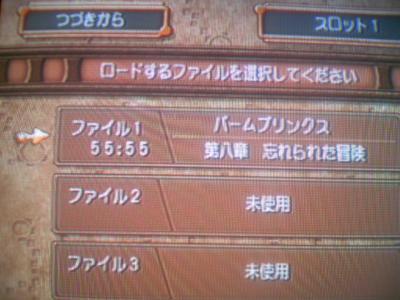 TS3E4185.jpg