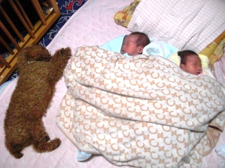 お銀と赤ちゃん 002