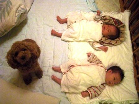 お銀と赤ちゃん 004