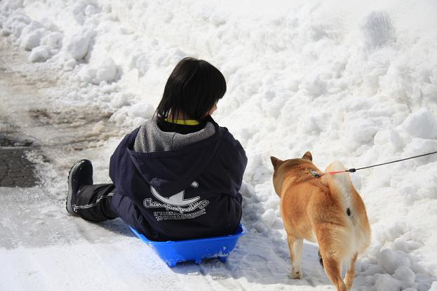 21 2月22日 雪遊び 118