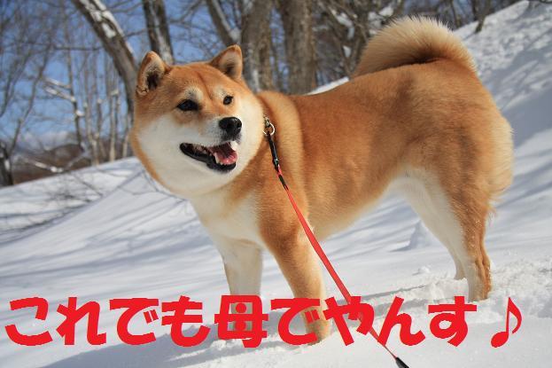 21 2月22日 雪遊び 020