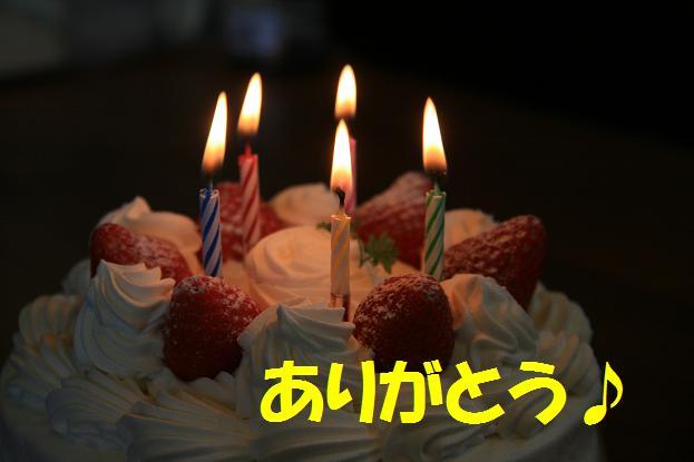 ケーキ 015