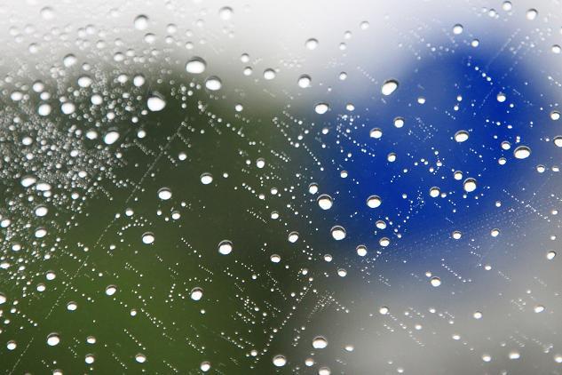 21 5月17日雨 004