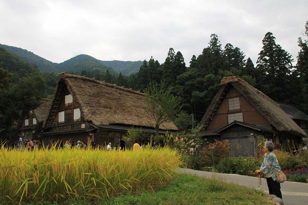 21 京都2 139