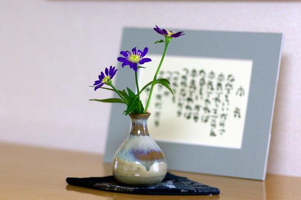 miyakowasure1.jpg