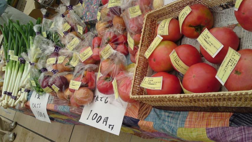 無農薬野菜収穫祭り1
