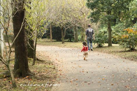 いち 秋の散歩道