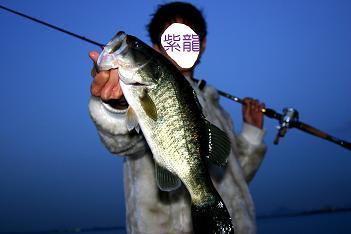 琵琶湖451