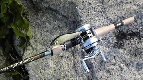 F3-610GTZ