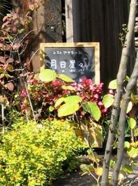 051113tukihihoshihoshi1.jpg