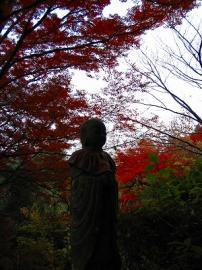 051127kasagiyama9.jpg