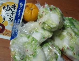 12月29日白菜