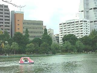 20060822013558.jpg
