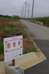 0811atarakacha9.jpg